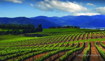 Photo Courtesy of Cascade Valley Wine Country