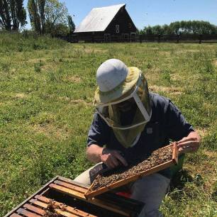 Apiary Tour and Tasting is just one of many culinary adventures offered during Whidbey Island Grown Week